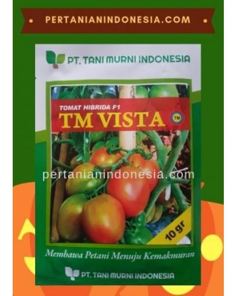 Benih Tomat TM Vista
