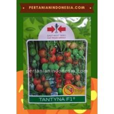 Tomat Tantyna