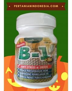 Vitamin B1 B6 Green World Pupuk Perangsang Akar