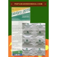 ZPT Gibgro Tablet 20T