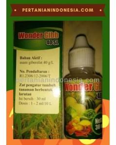 ZPT Wonder Gibb 40 SL