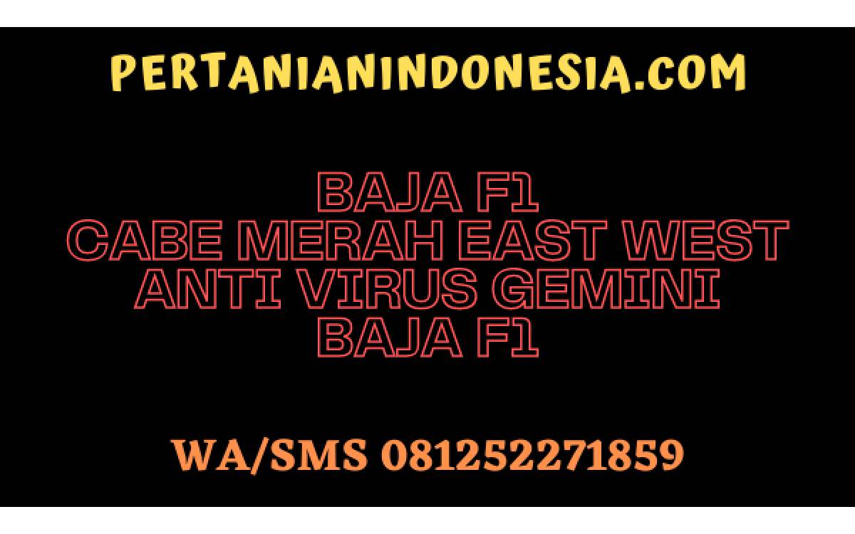 Baja F1 Cabe Merah East West Anti Virus Gemini