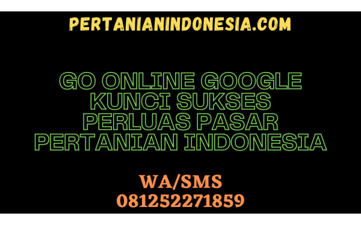 GO ONLINE GOOGLE KUNCI SUKSES PERLUAS PASAR PERTANIAN INDONESIA