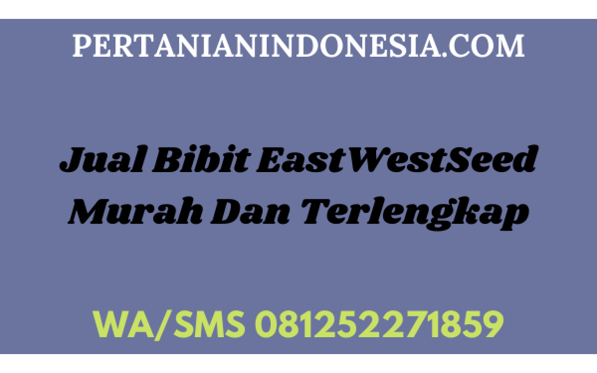 Jual Bibit EastWestSeed Murah Dan Terlengkap