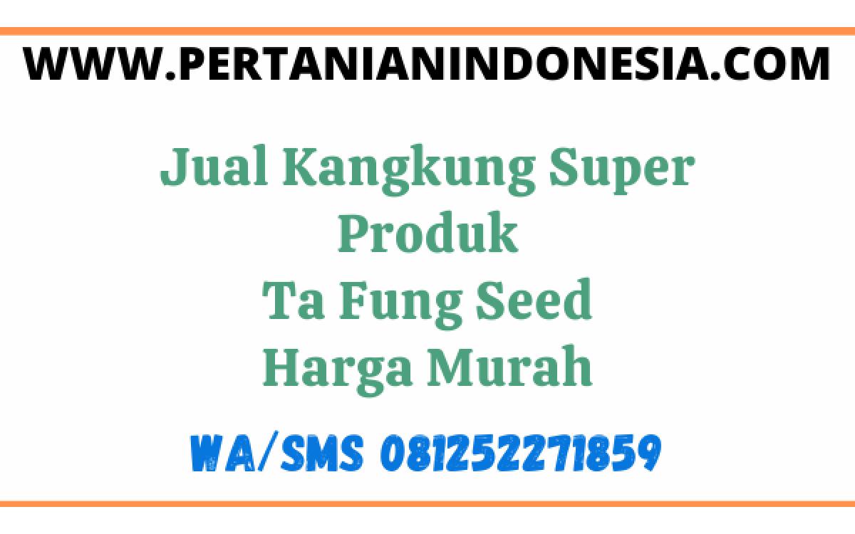 Jual Kangkung Super Produk Ta Fung Seed Harga Murah