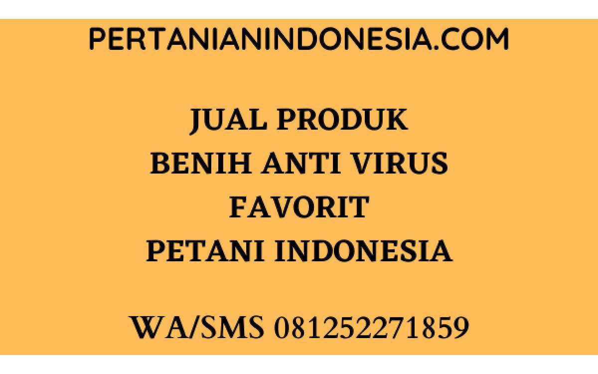 JUAL PRODUK BENIH ANTI VIRUS FAVORIT PETANI INDONESIA