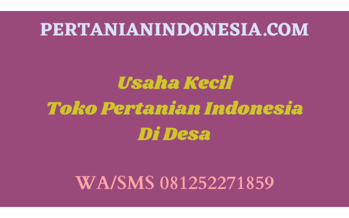 Usaha Kecil Toko Pertanian Indonesia Di Desa