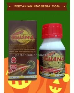Insektisida Iguana 50 EC