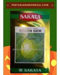 Benih Kol Green Gem